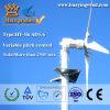5kw Wind und Solar Hybrid System