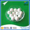 Xintao 99% Pure Alumina Ball per Catalyst Support Media