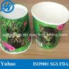 Pote/cubo de papel del jardín para la decoración Yh-L107