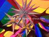 De Decoratieve Veelkleurige Opblaasbare van de Ster Event/Club Lichteffecten van de partij/