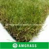 Un giardino Grass di 4 colori per Leisure