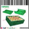 Caisses pliables en plastique compressibles de pp pour des fruits