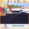 HDPE plástico Geocells del precio de fábrica para el establo la capa de balasto de la carretera