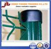 Nouvelle clôture de treillis métallique de courbes de la conception 3 de prix concurrentiel