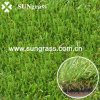 30mm Artificial Turf voor Landscape/Swinming Pool/Garden (qds-Hg-30)