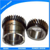 문과 Window Helical Pinion Gear
