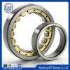 Rodamiento de rodillos cilíndrico de las ventas calientes de la alta calidad N209