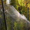 ステンレス鋼ケーブルワイヤー網の網