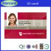 Cartão de permissão de trabalho da identificação