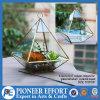 구리 색깔 실내 플랜트 홀더를 위한 기하학적인 정원 훈장 유리제 Terrarium