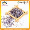 La lavanda secca germoglia il tè di erbe del fiore