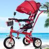 Rad-Spaziergänger des Baby-drei/Dreirad Ly-W-0118