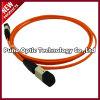 24 câbles optiques de joncteur réseau des faisceaux MPO
