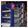 Tipo galinhas poedeiras chinesas do equipamento H das aves domésticas da galinha do equipamento de Agricutural de gaiolas de pássaro