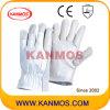 Оптовые промышленной безопасности Свинья зерно кожа драйвера Рабочие перчатки (22205)