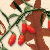 De ongebruikelijke Thee van Goji van de Vitaminen van de Geur Kruiden