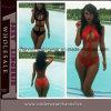 Sale caliente Women Micro Beachwear Push encima de Bikinis