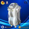 Máquina Multifunction de Velashape da venda por atacado da cavitação do RF para Slimming do corpo