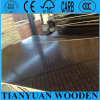 18mm Waterproof Plywood/Construction Formwork Plywood/Shuttering Plywood