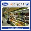 Solo Door Refrigeration Freezer para el almacén de Cold