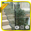 Lt Stainless Handrail를 가진 10mm Glass Balustrade