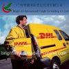 ガイアナへのDHL Express Delivery From中国