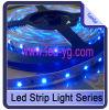 최고 광도 파란 3528SMD LED 지구 빛 (YG-SP3528B001)
