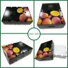 La cera sumergió el rectángulo acanalado del cartón para el empaquetado de las frutas