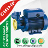 Chimp Electric 1HP Clean Water Pump
