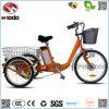 Regalo eléctrico del triciclo de la rueda grande de la bicicleta de la nueva rueda del diseño 3 para los minusválidos