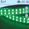 Striscia di tensione 277V LED di ETL IP67 120LEDs