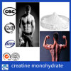 CAS 6020-87-7 스포츠 영양 도매 크레아틴 Monohydrate 분말
