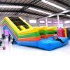 Standard gonfiabile Long Slides per Kid e Adult