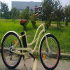 250W 리튬 건전지 함 전기 자전거 Rseb-1215