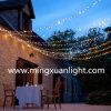 Luz 2016 feericamente do Natal para a decoração ao ar livre