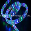 O diodo emissor de luz ideal colorido da cor do diodo emissor de luz descasca a corda do néon do diodo emissor de luz
