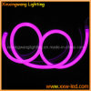 Licht van het Koord van het neon het Flexibele voor de Bouw van het Overzicht