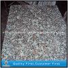 ピンクのColors G664 Granite FloorかWall Tiles、Exterior Flooring Tiles、