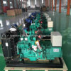 Gerador 10-600kw do biogás, combustível: Biogás, metano, LPG, GNL