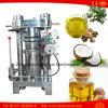 땅콩 알몬드 호두 호박 참깨 동백나무 기름 착유기 가격