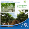 PP Nonwoven Fabric para Fruit Grape Cover Bag