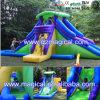 Water Slide Inflatable Backyard Water Park Slide (MCA-114)