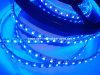 CER EMC LVD RoHS zwei Jahre der Garantie-, 5050/3528/2835 Streifen der LED-Streifen-Leuchte-LED