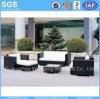 Le sofa de loisirs d'osier/rotin de meubles de jardin a placé pour l'hôtel