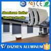 Profilo di alluminio di alluminio del rullo della saracinesca della finestra automatica del portello