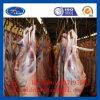 Bevriezende Kamer voor Bevroren Vlees