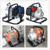 1 pollice Gasoline Water Pump per il giardino Use (WP10A)