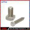 Lag Stainless Steel Fasteners Tailles personnalisées Metric Vis à bois