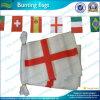 Bandeiras plásticas da estamenha da corda (NF11F02020)