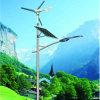 220V 40W hybrides Solar-LED Licht des Wind-(JS-C2015640)